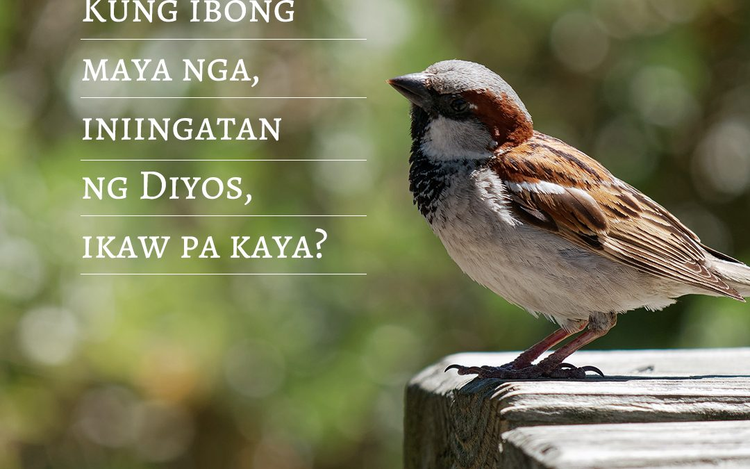 Huwag Kang Matakot